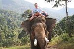 прогулка на слоне