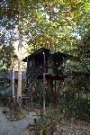 Отель Khao Sok Rainforest Resort